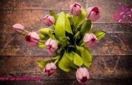 سبد گل مناسب تولد ، عروسی ، نامزدی