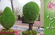 تزیین سبزه عید به شکل درخت